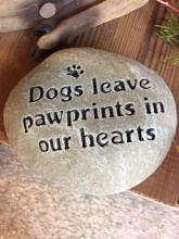 Paw Prints in the Heart